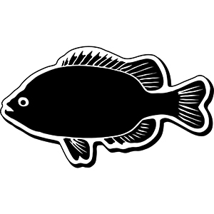 Item: Fish2 -  Indoor Notekeeper&#0153 Magnet